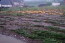 Hochwasser in Jennersdorf_1