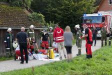 Jugendlicher Mountainbikefahrer verletzte sich bei Sturz auf Baumstumpf_3