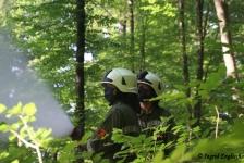 Waldbrandübung_10