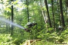 Waldbrandübung_12