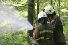 Waldbrandübung_13