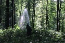 Waldbrandübung_17