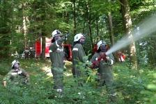 Waldbrandübung_48