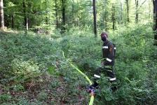Waldbrandübung_49
