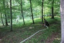 Waldbrandübung_50