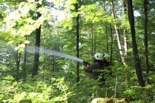 Waldbrandübung_9
