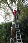 Zwei Personen aus Baumkrone gerettet_10