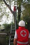 Zwei Personen aus Baumkrone gerettet_12