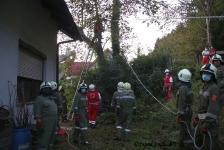 Zwei Personen aus Baumkrone gerettet_18