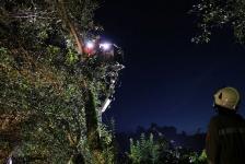 Zwei Personen aus Baumkrone gerettet_28