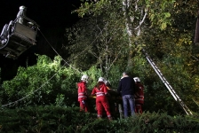 Zwei Personen aus Baumkrone gerettet_32