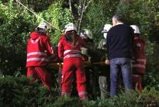 Zwei Personen aus Baumkrone gerettet_33