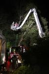 Zwei Personen aus Baumkrone gerettet_37