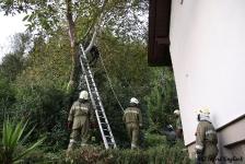Zwei Personen aus Baumkrone gerettet_6