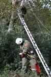 Zwei Personen aus Baumkrone gerettet_7